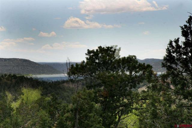 134,156,176 Sunset Trail, Arboles, CO 81121 (MLS #732578) :: Durango Home Sales