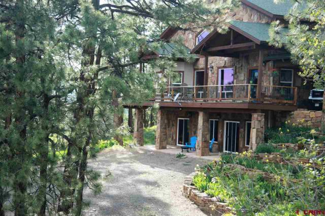 1408 Ironwood Drive, Pagosa Springs, CO 81147 (MLS #733215) :: Durango Home Sales