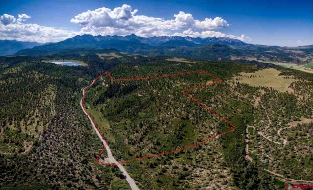 TBD Tranquility Trail, Ridgway, CO 81427 (MLS #736126) :: CapRock Real Estate, LLC