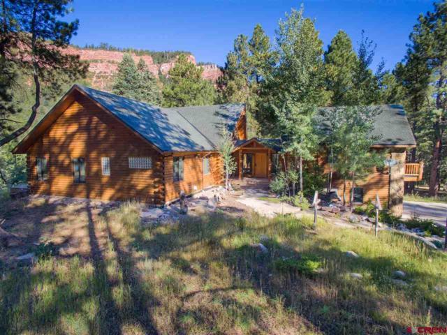 55 Starwood Trail, Durango, CO 81301 (MLS #737044) :: Durango Mountain Realty