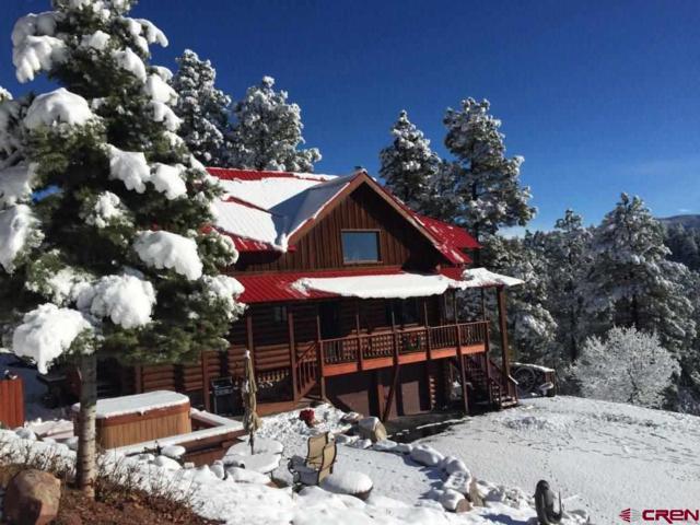 8961 Falls Creek Main, Durango, CO 81301 (MLS #738115) :: Durango Mountain Realty
