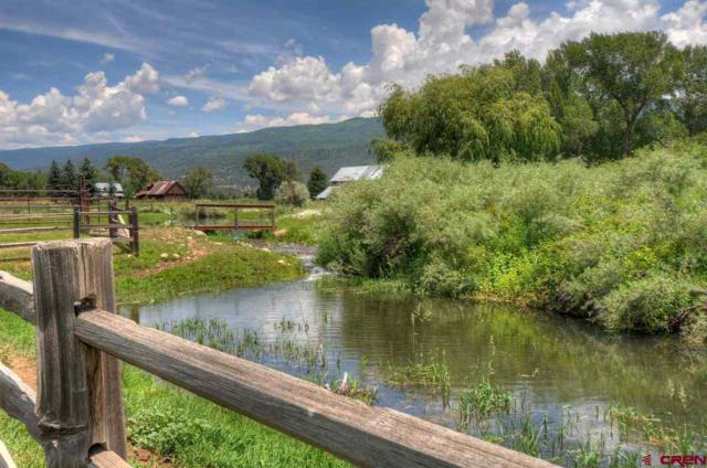 TBD S Coon Creek Lane, Durango, CO 81301 (MLS #740969) :: Durango Mountain Realty