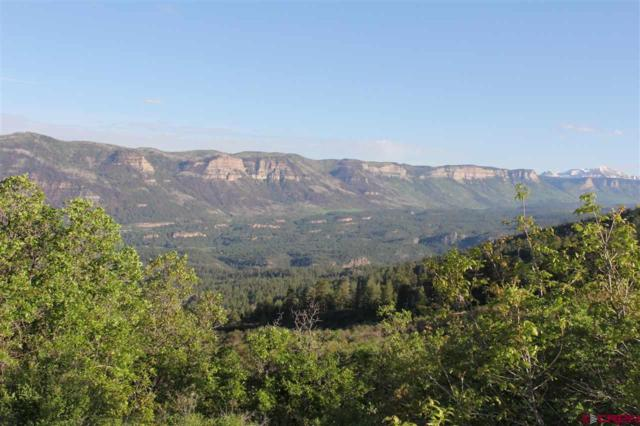 520 Star Peak, Durango, CO 81301 (MLS #741174) :: Durango Mountain Realty