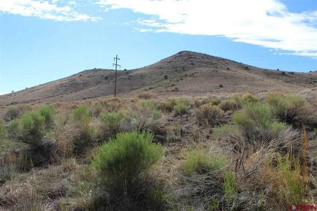 Cord 14, Del Norte, CO 81132 (MLS #741464) :: The Dawn Howe Group | Keller Williams Colorado West Realty