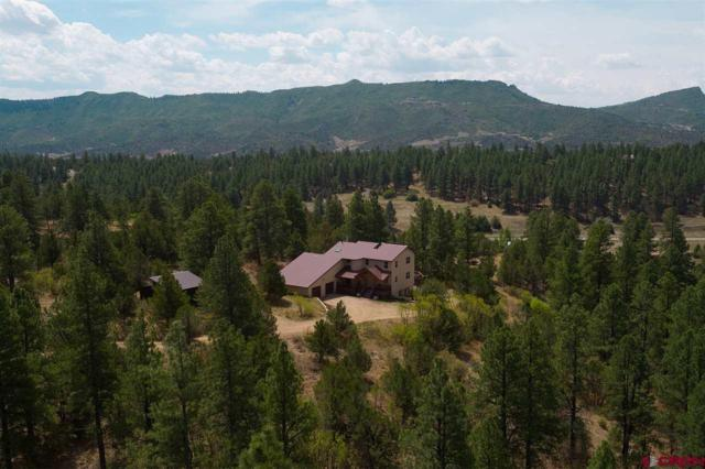 416 Red Oaks Lane, Hesperus, CO 81326 (MLS #741838) :: Durango Home Sales