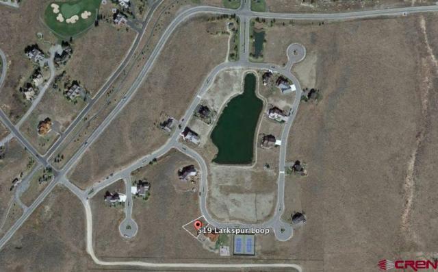 519 Larkspur Loop, Crested Butte, CO 81224 (MLS #741942) :: Durango Home Sales