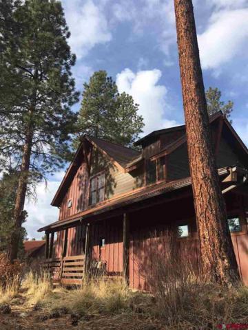 181D Copper Rim Trail, Durango, CO 81301 (MLS #742153) :: Durango Mountain Realty