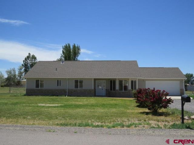 10727 La Habra, Eckert, CO 81418 (MLS #742412) :: CapRock Real Estate, LLC
