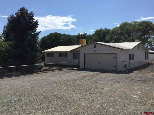 12365 E Spring Circle, Eckert, CO 81418 (MLS #742675) :: CapRock Real Estate, LLC