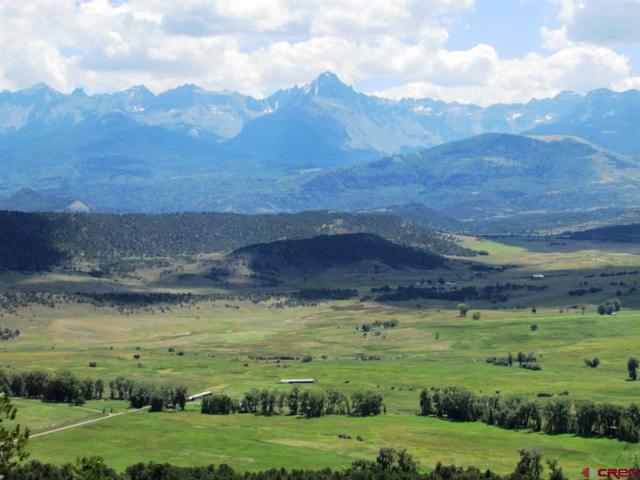1036 Pleasant Valley Drive, Ridgway, CO 81432 (MLS #742999) :: Durango Home Sales