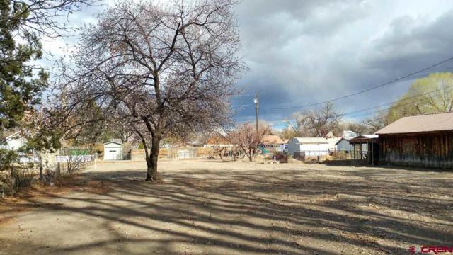 254 Leon Street, Delta, CO 81416 (MLS #743012) :: Durango Home Sales
