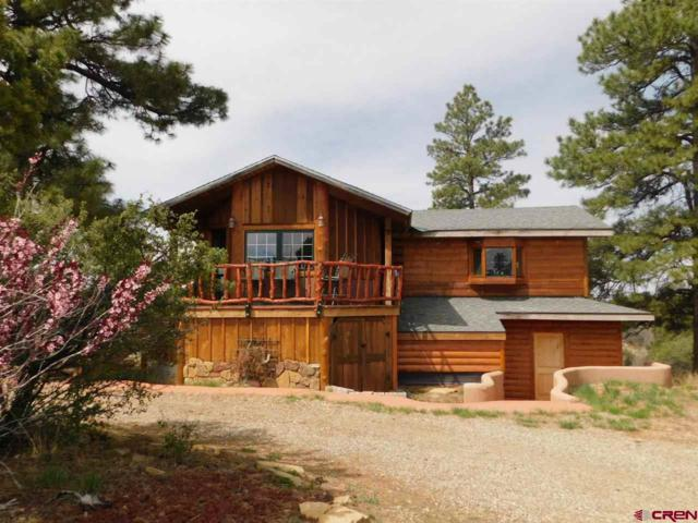 30981 Road V.6, Dolores, CO 81323 (MLS #744389) :: Durango Home Sales
