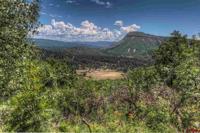TBD Destination Ranch Road, Durango, CO 81301 (MLS #744631) :: Durango Mountain Realty