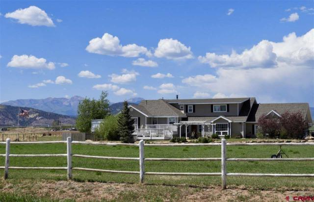 331 Cr 302, Durango, CO 81303 (MLS #745009) :: Durango Home Sales
