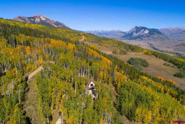 450 Oversteeg Gulch Road, Crested Butte, CO 81224 (MLS #746164) :: Durango Home Sales