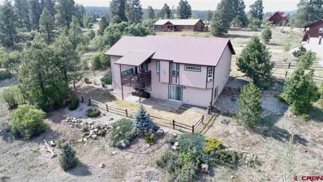 100 Monte Vista Drive, Pagosa Springs, CO 81147 (MLS #746707) :: CapRock Real Estate, LLC