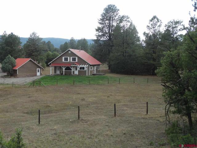 1414 Buttress Avenue, Pagosa Springs, CO 81147 (MLS #747659) :: CapRock Real Estate, LLC