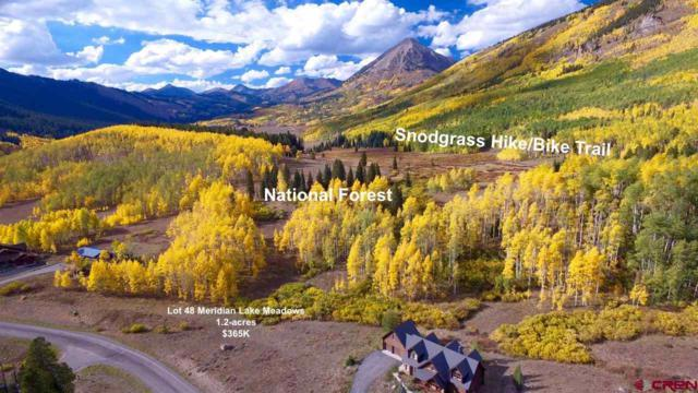 555 Meadow Drive, Crested Butte, CO 81224 (MLS #748142) :: CapRock Real Estate, LLC