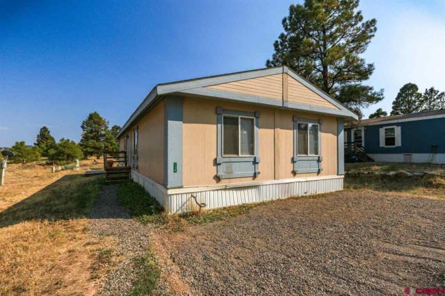 114 Surrey Drive, Pagosa Springs, CO 81147 (MLS #748251) :: Durango Home Sales