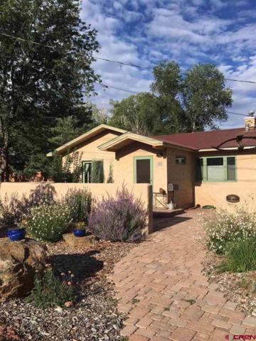 191 Riverview Drive, Durango, CO 81301 (MLS #748918) :: Durango Mountain Realty