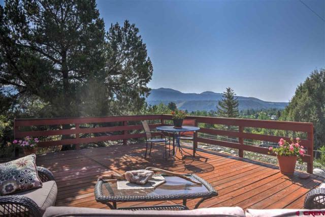 118 Conejo Place, Durango, CO 81301 (MLS #749049) :: CapRock Real Estate, LLC