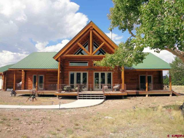 229 Castle Circle, Powderhorn, CO 81243 (MLS #749900) :: Durango Home Sales