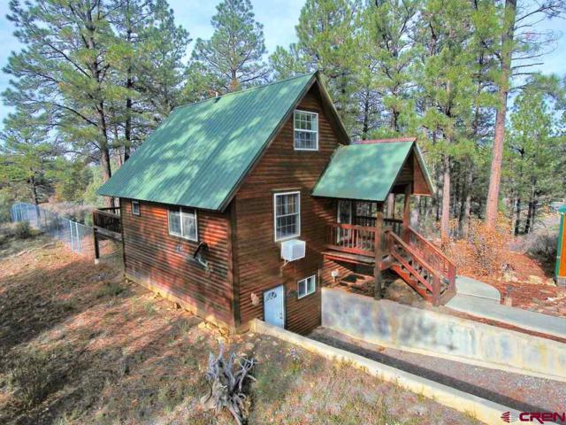 110 Dyke Circle, Pagosa Springs, CO 81147 (MLS #751829) :: Keller Williams CO West / Mountain Coast Group
