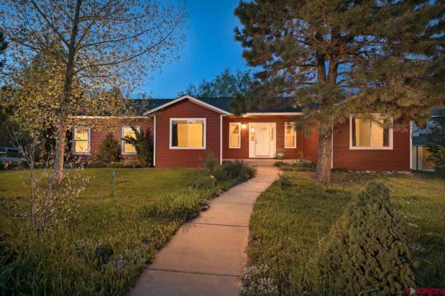 901 Oak Drive, Durango, CO 81301 (MLS #752138) :: Durango Mountain Realty