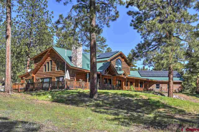 159 Shiloh Circle, Durango, CO 81303 (MLS #754674) :: Durango Mountain Realty