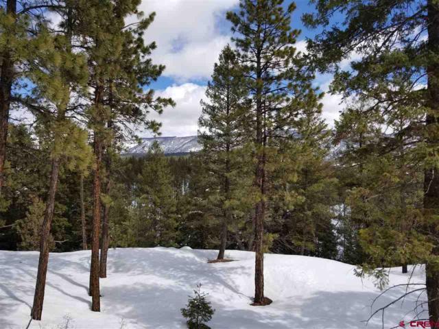 95 Bluff Drive, Durango, CO 81301 (MLS #755269) :: Durango Mountain Realty