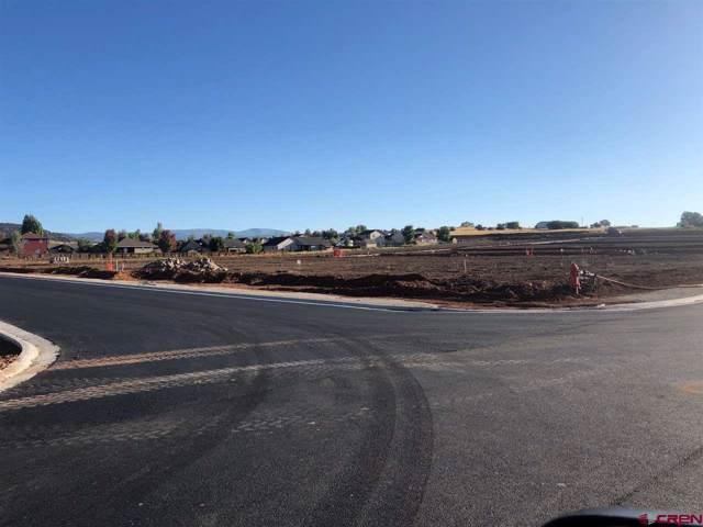438 Sunflower Lane, Bayfield, CO 81122 (MLS #755385) :: The Dawn Howe Group | Keller Williams Colorado West Realty