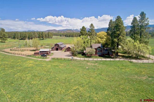 220 Cr 505, Bayfield, CO 81122 (MLS #756734) :: Durango Mountain Realty