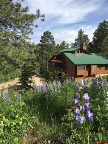 89 Sunset Lane, Durango, CO 81301 (MLS #758842) :: Durango Mountain Realty