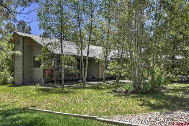 142 Cedar Drive, Durango, CO 81301 (MLS #758931) :: Durango Mountain Realty