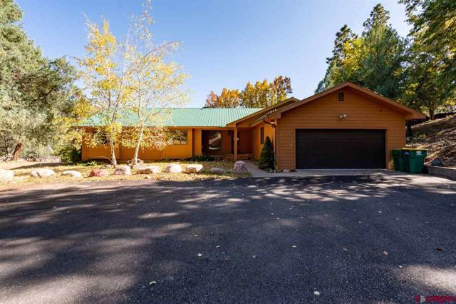 179 Tripp Creek Road, Durango, CO 81301 (MLS #763707) :: Durango Mountain Realty