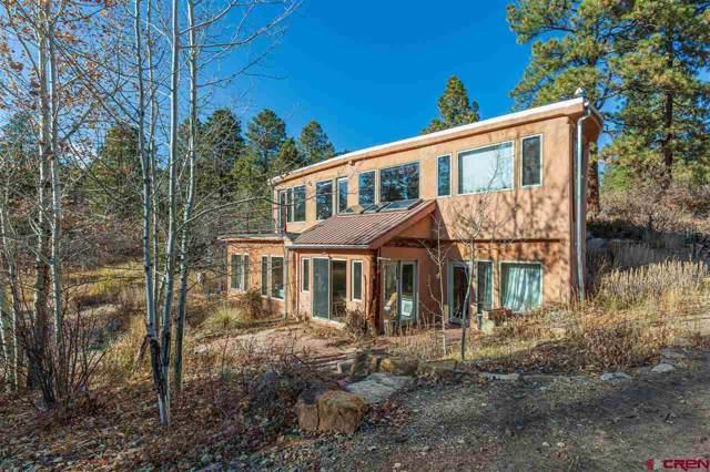 886 Silver Mesa Driveway, Durango, CO 81301 (MLS #764571) :: Durango Mountain Realty