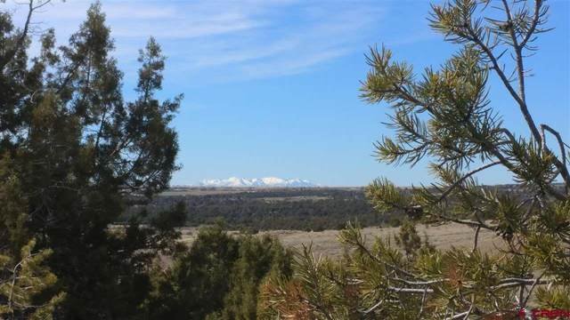 Lot 3 V.5 Road, Dolores, CO 81323 (MLS #766116) :: The Dawn Howe Group | Keller Williams Colorado West Realty