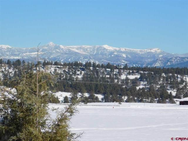1201 Trails Boulevard, Pagosa Springs, CO 81147 (MLS #766165) :: The Dawn Howe Group | Keller Williams Colorado West Realty