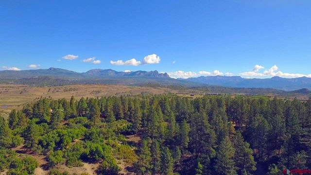 X Spring Valley Ranch Rd., Pagosa Springs, CO 81128 (MLS #767232) :: The Dawn Howe Group | Keller Williams Colorado West Realty