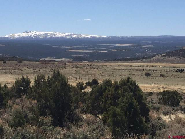 Lot 30 7250 Road, Montrose, CO 81403 (MLS #768705) :: The Dawn Howe Group | Keller Williams Colorado West Realty