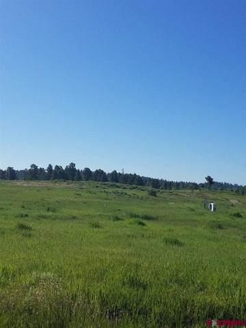 40 Port Avenue, Pagosa Springs, CO 81147 (MLS #769278) :: The Dawn Howe Group | Keller Williams Colorado West Realty