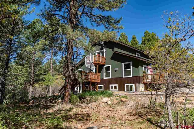 384 Monument Avenue, Pagosa Springs, CO 81147 (MLS #769808) :: The Dawn Howe Group   Keller Williams Colorado West Realty