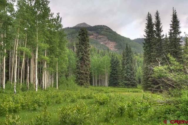 53001 N Hwy 550, Silverton, CO 81301 (MLS #770149) :: Durango Mountain Realty