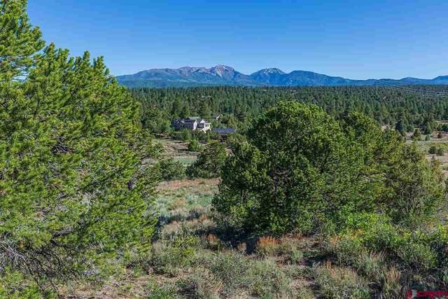 648 Wildcat Trail, Hesperus, CO 81326 (MLS #770705) :: Durango Mountain Realty