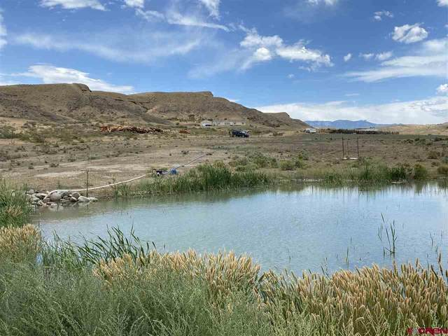34179 Owl Lane, Hotchkiss, CO 81419 (MLS #771997) :: The Dawn Howe Group | Keller Williams Colorado West Realty