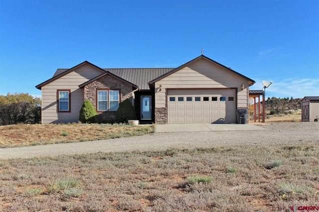 26997 Road U.2, Dolores, CO 81323 (MLS #772267) :: The Dawn Howe Group | Keller Williams Colorado West Realty