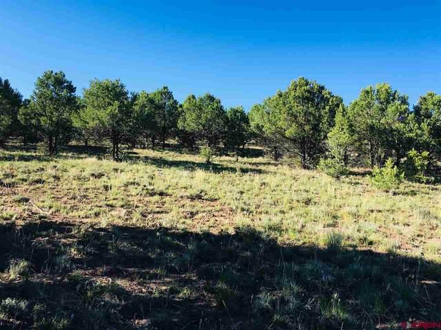 1682 Ponderosa Drive, Ridgway, CO 81432 (MLS #772836) :: The Dawn Howe Group | Keller Williams Colorado West Realty