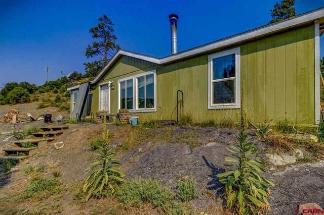 721 Hurt Drive, Pagosa Springs, CO 81147 (MLS #773592) :: The Dawn Howe Group | Keller Williams Colorado West Realty