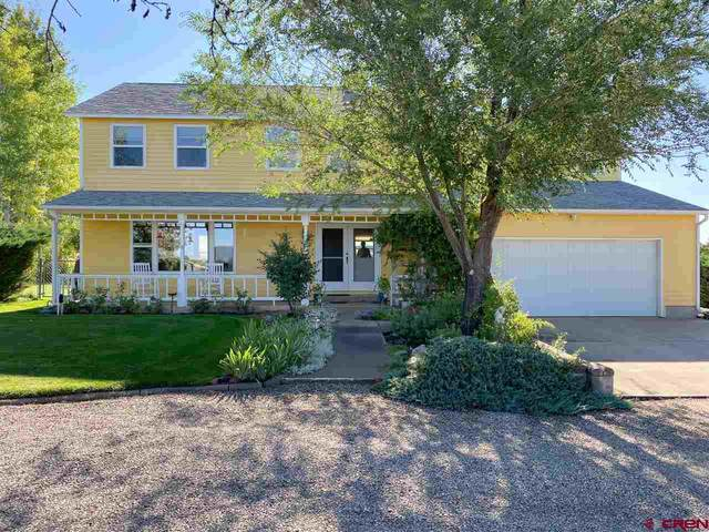 29166 Road M.4, Dolores, CO 81323 (MLS #773981) :: The Dawn Howe Group | Keller Williams Colorado West Realty