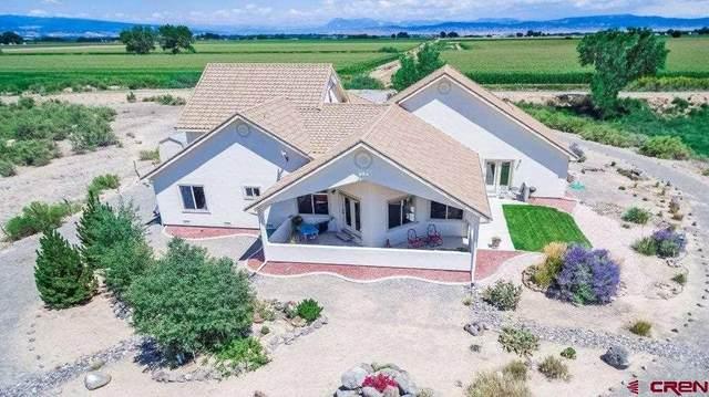 3447 1360 Road, Delta, CO 81416 (MLS #775450) :: The Dawn Howe Group | Keller Williams Colorado West Realty